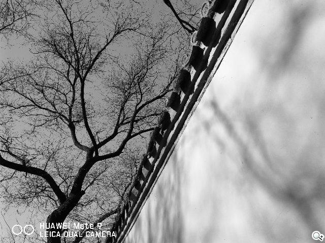 二代莱卡双镜头加持:华为Mate9系列拍照体验